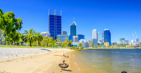 Perth Market Snapshot for the week ending 12 August 2018